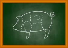 图画猪 免版税库存照片