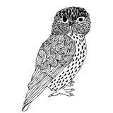 图画现有量原来的猫头鹰 免版税库存图片