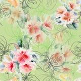 图表上升了与水彩在浅绿色的背景的花束花 无缝花卉的模式 免版税库存照片