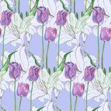 图表开花百合和郁金香在蓝色背景 无缝花卉的模式 免版税库存图片