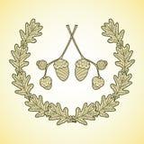 图表橡木叶子和橡子花圈分支 免版税图库摄影