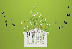 图表生长植物 免版税库存图片