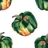 图表艺术性的抽象明亮的逗人喜爱的秋天成熟鲜美五颜六色的万圣夜绿色南瓜仿造水彩手例证 皇族释放例证