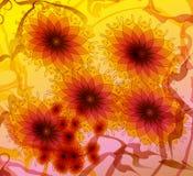 图解地被画的雏菊花 库存图片