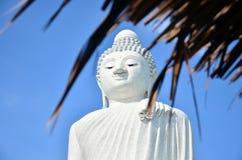 图象大菩萨雕象或Pra Puttamingmongkol Akenakkiri在普吉岛泰国 库存照片
