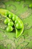 图象宏观豌豆荚 库存照片