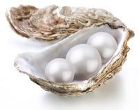 图象成珠状存放人壳白色 图库摄影