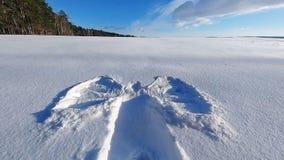 图,天使版本记录剪影在清楚的雪的 领域和森林背景的 图库摄影