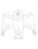 老鹰的彩图E 免版税库存图片