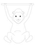 猴子的彩图M 库存照片