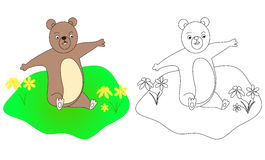 熊的彩图B 库存图片