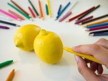图画柠檬 库存照片