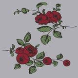 图画样式花,绘画特写镜头 库存照片