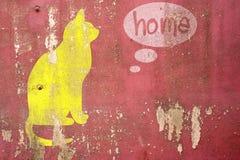 图画猫思乡病在破裂的混凝土 免版税库存照片