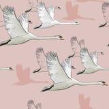 图画飞行天鹅的无缝的样式的例证 手拉,与鸟的乱画图形设计 饮料例证纸张减速火箭主题向量包裹 免版税库存照片