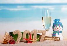 图2017年香槟瓶,玻璃,雪人,反对海的圣诞树 库存图片