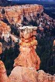 圆形剧场bryce峡谷 库存照片