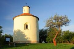 圆形建筑的结构树 库存照片