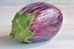 圆形茄子  免版税库存图片