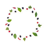 圆构成莓果和叶子 免版税库存照片