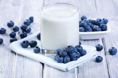 圆滑的人用新鲜的蓝莓 图库摄影