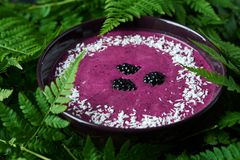 圆滑的人碗用黑莓 免版税库存照片