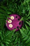 圆滑的人碗用黑莓 库存照片