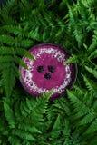 圆滑的人碗用黑莓 库存图片