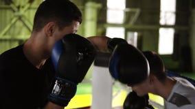 圆环的年轻男性拳击手在便服履行互相和方式的拳打如何未参加命中 人训练 影视素材