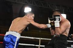 圆环的拳击手在为排列的战斗期间指向 免版税库存图片