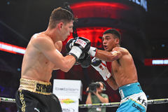 圆环的未认出的拳击手在为排列的战斗期间指向 库存图片
