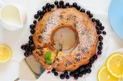 圆环葡萄干蛋糕,平的位置 免版税库存照片