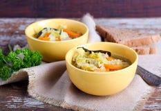 圆白菜、红萝卜和红色小扁豆汤 免版税图库摄影