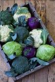 从圆白菜不同的品种的构成在木背景的 花椰菜,撇蓝,硬花甘蓝,白色卷心菜 有机 库存图片