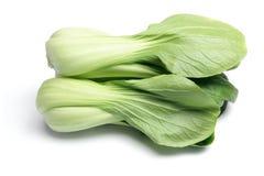 圆白菜中国白色 库存图片