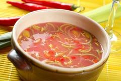 圆白菜冷做的烂醉如泥的汤 免版税图库摄影