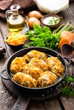 圆白菜卷炖了用肉和菜在平底锅在黑暗的木背景 免版税库存图片