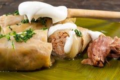 圆白菜卷用肉末和米填装了 传统罗马尼亚食物 免版税库存图片