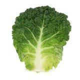 圆白菜叶子开胃菜 免版税库存图片