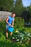 给圆白菜喝水的一个亭亭玉立的年轻人在剧情的庭院里 免版税库存照片