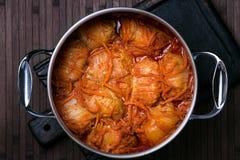 圆白菜在蕃茄小汤滚动在一块白色板材 图库摄影