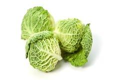 圆白菜开胃菜三 库存图片