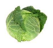 圆白菜开胃菜 库存图片