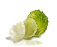 圆白菜开胃菜 免版税库存照片