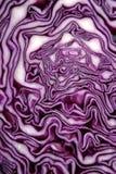 圆白菜接近的红色 免版税库存图片