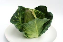 圆白菜新绿色 免版税库存图片