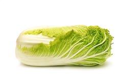 圆白菜汉语 免版税库存照片