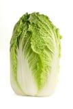 圆白菜汉语 库存图片