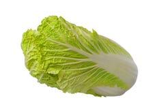 圆白菜汉语 免版税库存图片