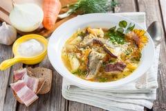 圆白菜汤用蘑菇和大麦米 俄国人/斯洛伐克烹调 库存照片